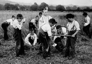 Group of boys working in a field at the Philanthropic Society Farm School. Library and Archives Canada collection.